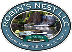 Natural Pools & Swim Ponds by Robin's Nest